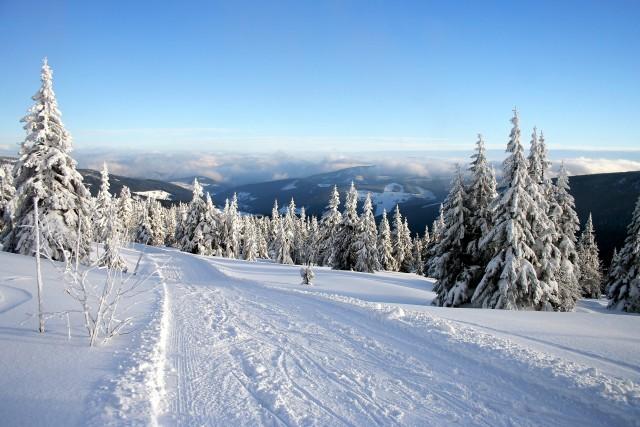 Śnieżne krajobrazy? Tryb manualny