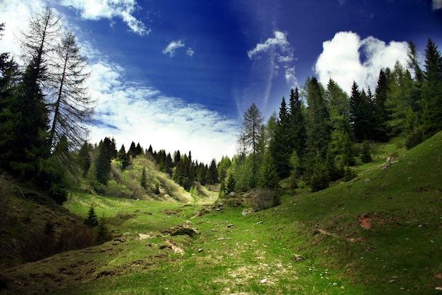 Ostrość w fotografii krajobrazowej