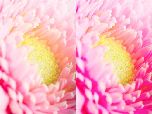 jak zwiększyć nasycenie zdjęć bez straty jakości