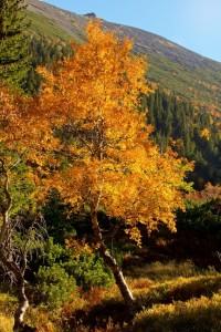 Fotografowanie jesiennych krajobrazów
