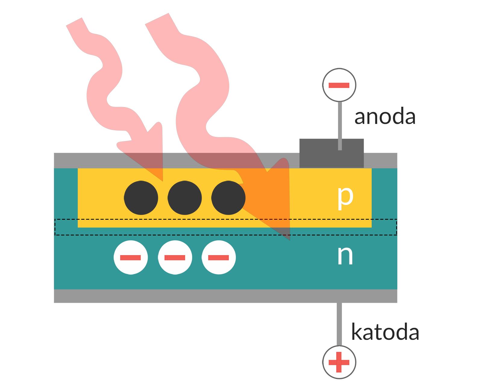 Jak działa fotodioda w matrycy aparatu fotograficznego